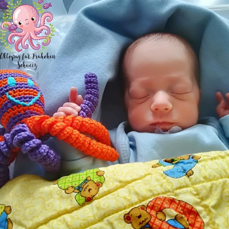 Oktopus Für Frühchen Schweiz Octopus For A Preemie Switzerland